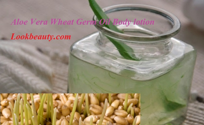 Aloe Vera Herbal Moisturizing Lotion - DIY
