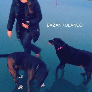 David Bazan Blanco