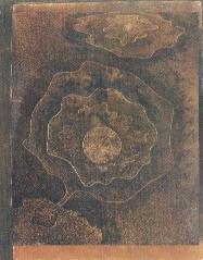 Klee, Singolarità di piante