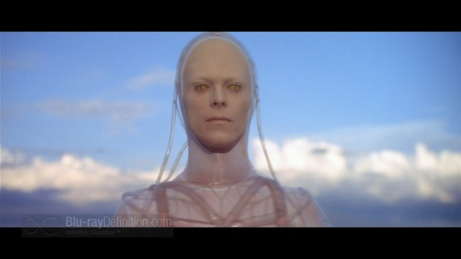 L69-011116-Bowie