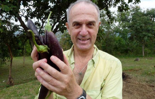 L69-022016-ugandaeggplant