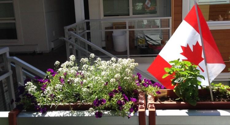 L69-070116-flag