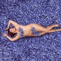 """Now Showing: The Real """"American Beauty"""""""