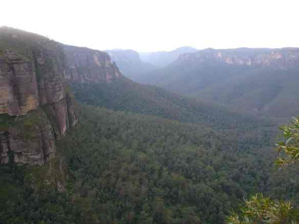 Grose Valley and it's yawning