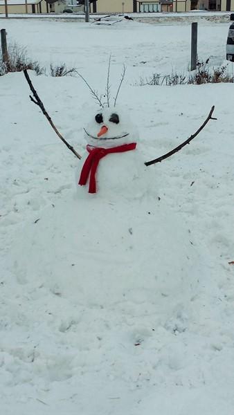 зима в Мордене 2013-2014 (1)
