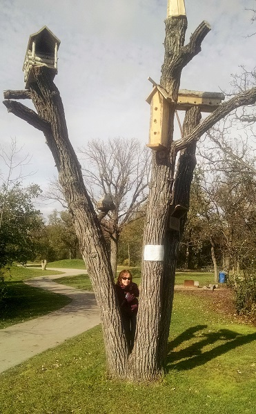 Asseniboine Park (2)