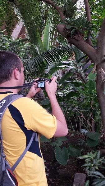 Тропики Южной Америки