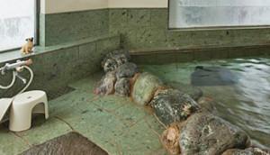 プチホテルサンロード風呂