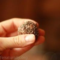 Naturally Made Raw Coconut Maca Chia Power Balls