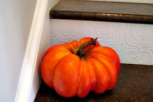 pumpkin before