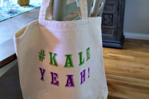 DIY Stenciled Tote Bag with FolkArt