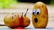 Neem dus niet te veel aardappelen mee. In de meeste landen kun je ook prima lokale producten kopen!