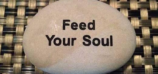 feed-y-soul-web