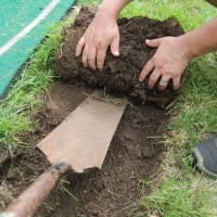 Creating a Garden Bed - Sod Stripping 101