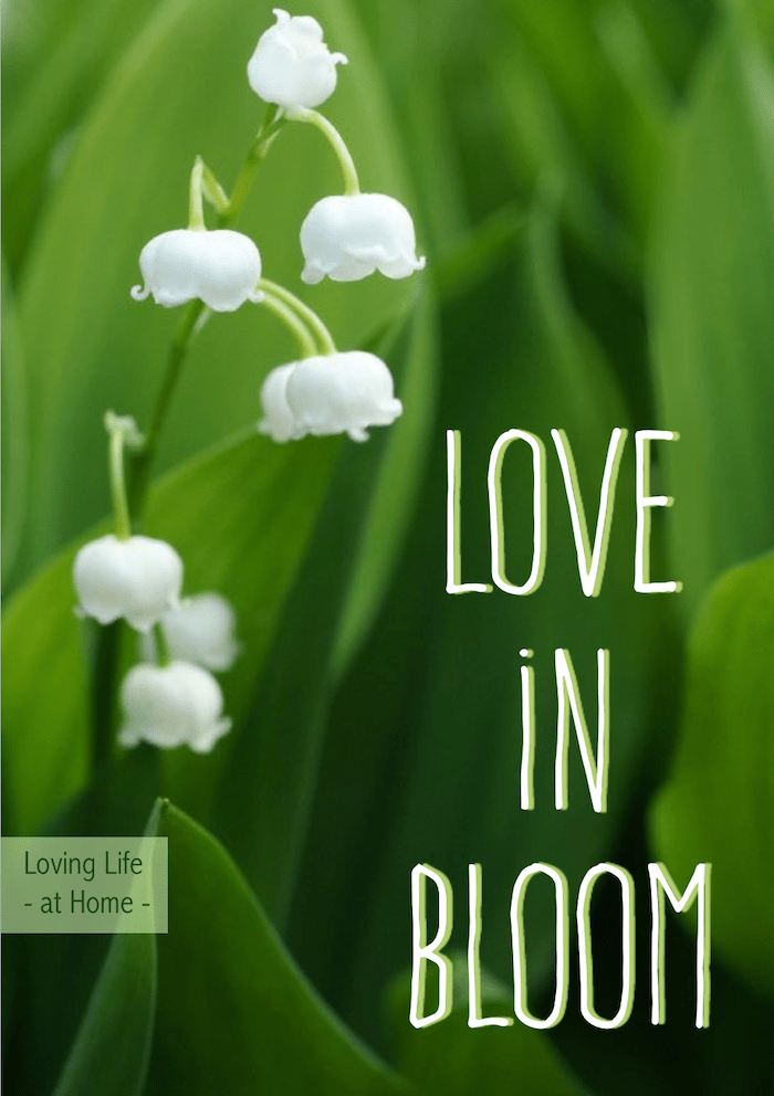 Love in Bloom: 5 Essentials for a Thriving Marriage. Are you willing to put in the work needed to make your relationship blossom?