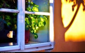 Window - Photo credit: Flickr; https://www.flickr.com/photos/aigle_dore/6365060845