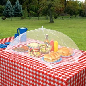 How to Protect Food from Insects at Outdoor Barbecues and Picnics