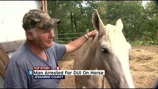 Horse DUI