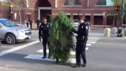 Officers take Tree into custody (image: still from clip posted by @TVTEDDY)