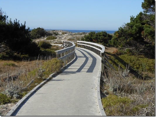 Asilomar-Spanish Bay 067