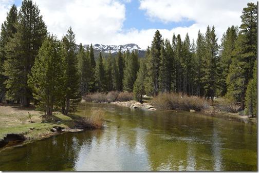Yosemite Tuolumne River