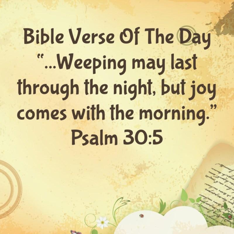 Large Of Joy Bible Verses
