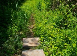 The path comes to an abrupt dead end.