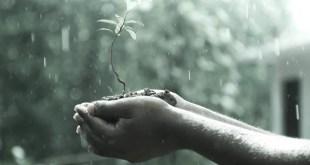 തെക്കുപടിഞ്ഞാറന് കാലവര്ഷം – പ്രവചനവും സാധ്യതകളും