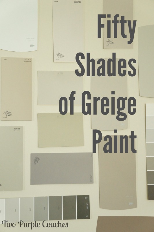 Fifty-Shades-Greige-Paint-Two-Purple-Couches
