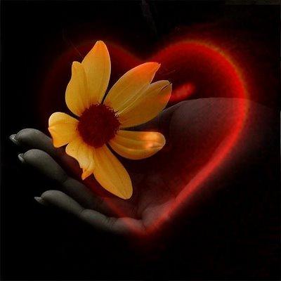 صور حب رائعة صور رومانسية غرامية كول هتقول جباااااااار