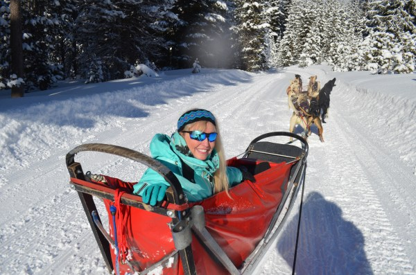 Riding in the Iditarod dogsled.  Oh what fun!