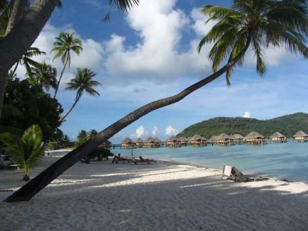 Beach_Bora Bora_Patti Morrow