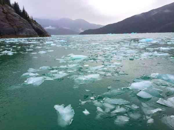 7-alaska_leconte-glacier-patti-morrow_luggageandlipstick-com_-jpg4115