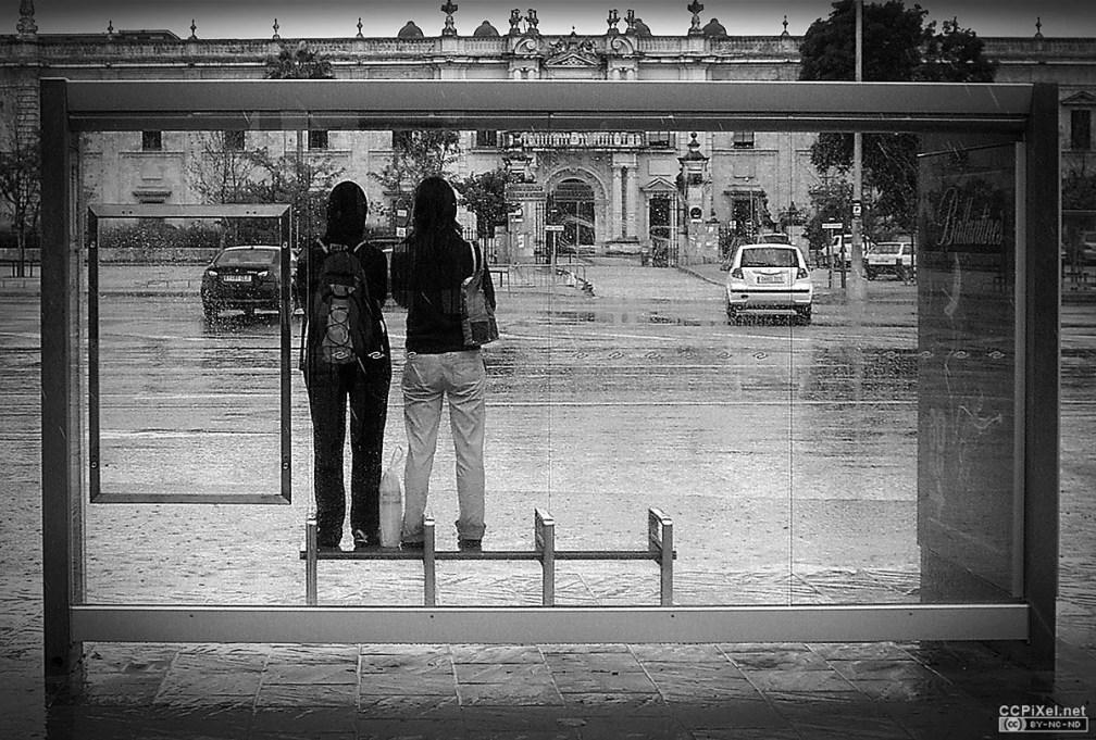 viendo-la-lluvia-caer-ccpixel