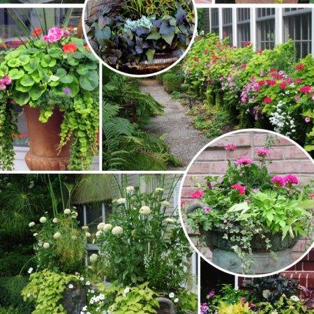 front porch planter container garden inspiration
