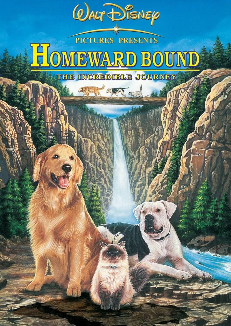 Large Of Watch Homeward Bound