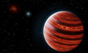 "Scientists Discover New ""Young Jupiter"" Planet 100 Light Years Away"