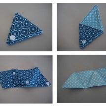 TriangleBleuPoisCarine