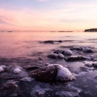 Sarvipöllö ja talviaurinkoa Lauttasaaressa
