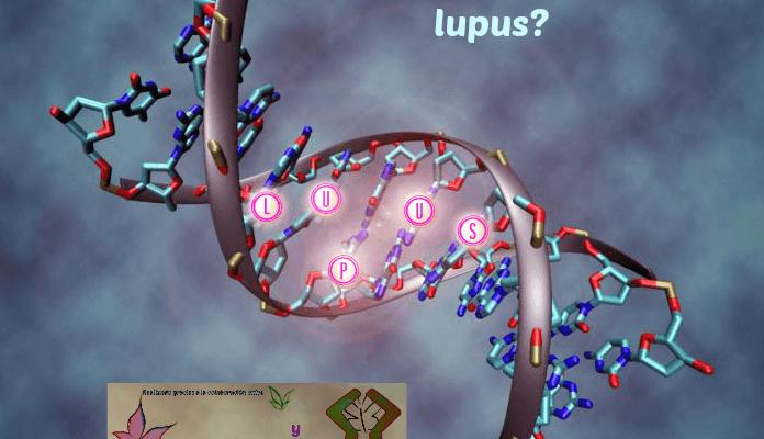 ¿Existe un mapa genético del lupus único para todos los pacientes?
