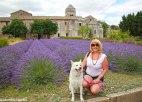 Jdombs-Travels-Saint-Paul-17