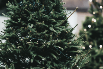 On Practicing Mindfulness This Holiday Season, LVBX Magazine