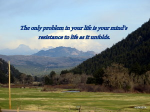 Life Unfolds quote