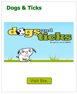 dogs-and-ticks