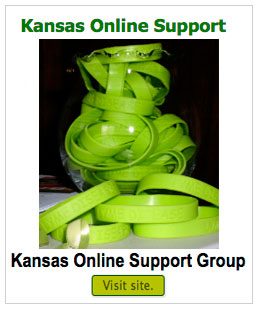 kansas-online-support