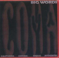 bigwordscover1