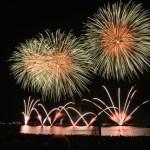 fireworks-rocket-night-sky-46159