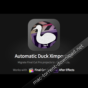 Automatic duck ximport ae icon