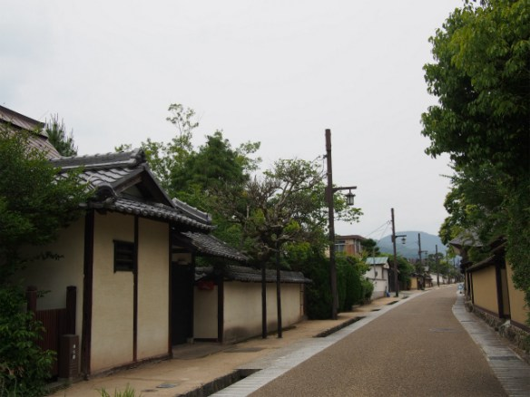 P6090015 歴史的情緒あふれる城下町、丹波篠山 / Sasayama, castle town with historical atmosphere
