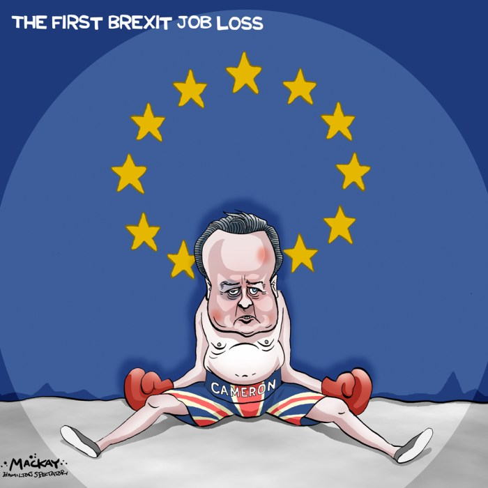 """Editorial Cartoon by Graeme MacKay, The Hamilton Spectator Ð Friday June 24, 2016 British PM David Cameron to step down this year in wake of EU vote Prime Minister David Cameron says he will resign by the fall and insists the British people's will must be respected after voters chose to leave the 28-nation European Union. """"I do not think it would be right for me to be the captain that steers our country to its next destination,"""" Cameron told reporters outside 10 Downing Street just before 8:30 a.m. in London. Cameron, in power for six years, said he will resign by the time of the Conservative party conference in the fall. He turns 50 on Oct. 9. """"I held nothing back,"""" he said. """"I was absolutely clear in my belief that Britain was stronger, safer and better off inside the European Union É but the British people have made a very clear decision to take a different path.Ó Cameron said he had spoken to Queen Elizabeth II about the steps he was undertaking to prepare the government for new leadership. British stocks are plunging as the market opens as investors scramble to react to the news. The pound has hit a 31-year low. Cameron sought to reassure investors and markets that """"Britain's economy is fundamentally strong.Ó When he promised the referendum, in 2013, Cameron said it would """"settle this European question in British politics"""" once and for all. He told voters he would forge a new deal between Britain and the EU that would make remaining an attractive prospect. At a Brussels summit in February, he won changes to welfare benefits that he said would reduce immigration and an exemption for Britain from the EU's commitment to """"ever-closer union"""" Ñ a phrase that stirs images of a European super-state in some patriotic British hearts. (Source: CBC News) UK, Great Britain, England, David Cameron, EU, Brexit, boxing, European Union, referendum"""